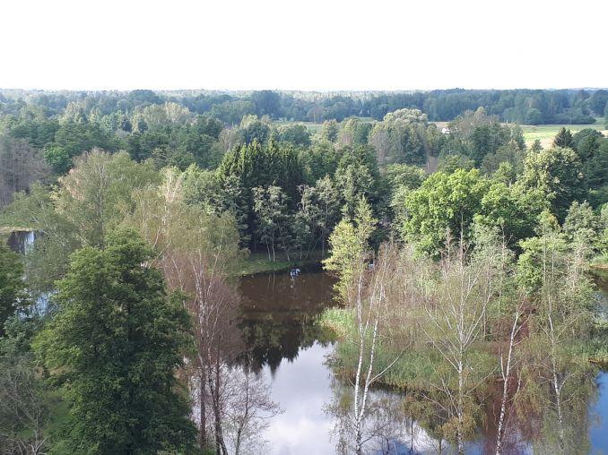 Vaizdas nuo Kirkilų apžvalgos bokšto